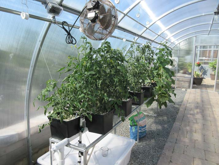 Greenhouses Image
